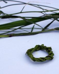 Ring van gras