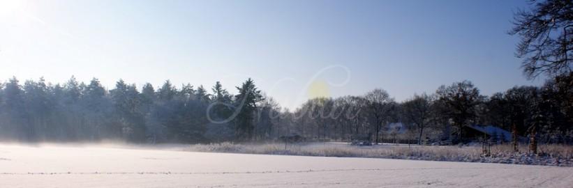 zonnestralen op sneeuwlandschap
