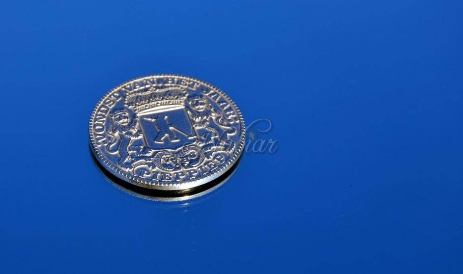 zilveren penning tiel utrecht betuwe