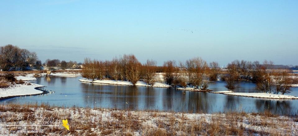 wetlands passewaaij tiel winter